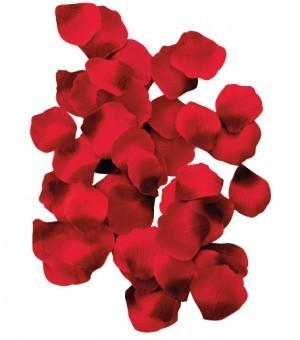 P�tales de Roses en Tissus